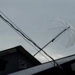 混沌製作所の屋根の傘